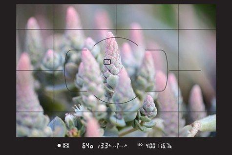 https://www.karacasulu.com/wp-content/uploads/2020/01/d780_electronic_range_finder-original.jpg