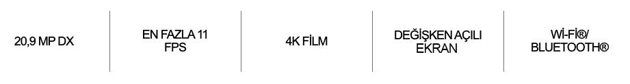 https://www.karacasulu.com/wp-content/uploads/2021/07/Zfc_feature.png